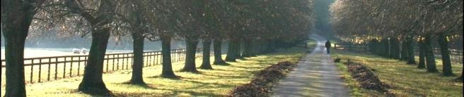 path123.jpg