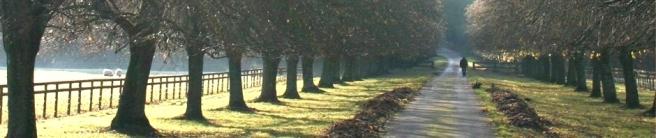 path124.jpg